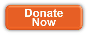Donate-Now – Copy – Copy