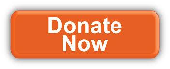 Donate-Now – Copy – Copy